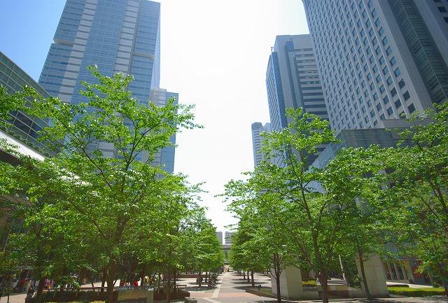 2007-04-30 11-42-04_0193.jpg