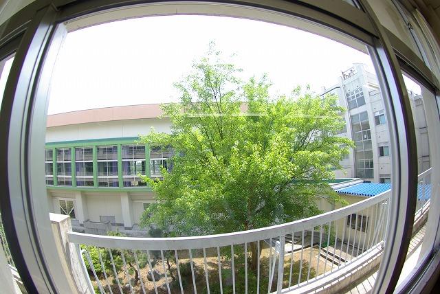 2007-05-21 13-15-44_0037.jpg