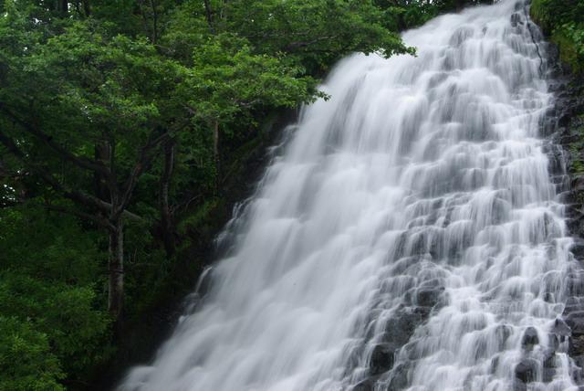 2007-08-05 11-43-08_0153_TCY?X.JPG