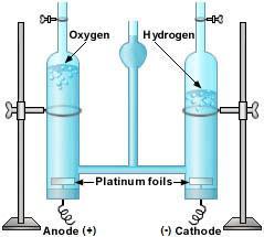 Hoffman_voltameter.jpg