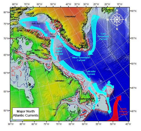LabradorCurrentus-coastguard.jpg