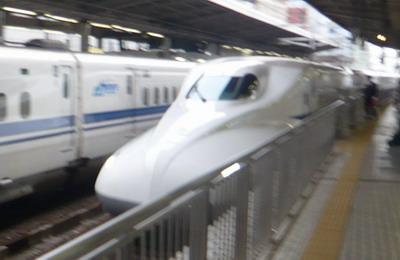 P1070409-400.jpg